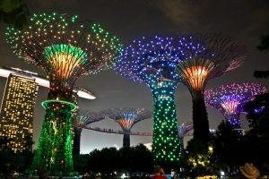 باغ خلیج سنگاپور | تور سنگاپور,گردشگری سنگاپور,مناطق دیدنی سنگاپور