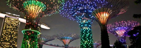 باغ خلیج سنگاپور | تور سنگاپور