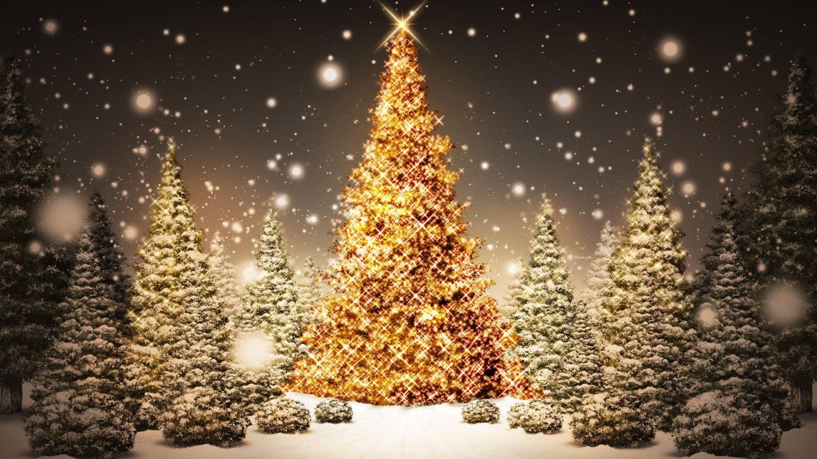تورهای کریسمس ۲۰۱۸