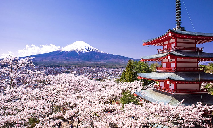 ژاپن | قیمت تور ژاپن | تور ارزان ژاپن | تور لحظه آخری ژاپن | بهترین زمان سفر به ژاپن