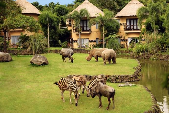 جاذبه های گردشگری بالی | قیمت تور بالی