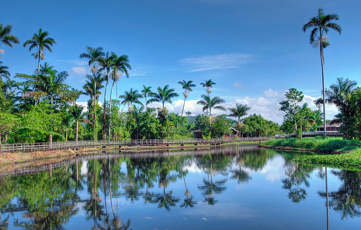 معرفی کوبا | قیمت تور کوبا